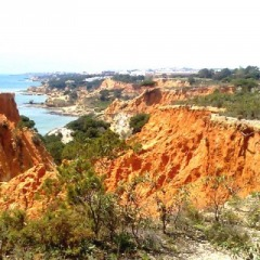 Algarve-Portal