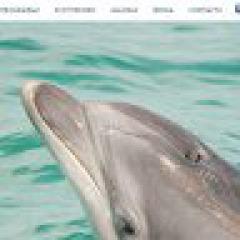 """Tipp: """"Vertigem Azul"""" - Turismo de Natureza"""